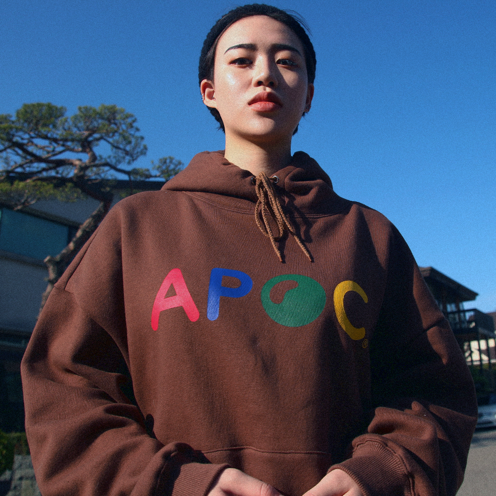 Multi Color Logo hoodie_Brown